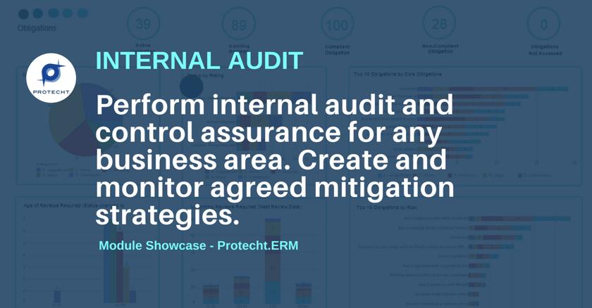Internal Audit. ERM Module