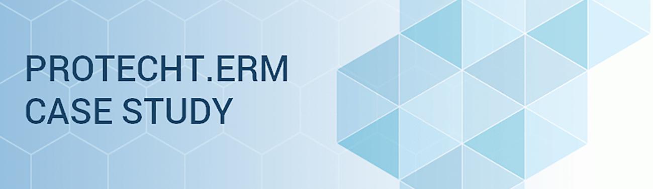 protecht.erm_case_study_final-1.png